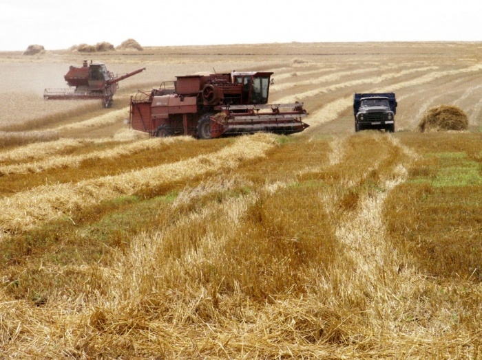 Землю в Агиа Анна под сельское хозяйство